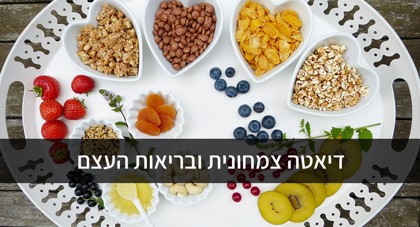 דיאטה צמחונית ובריאות העצם