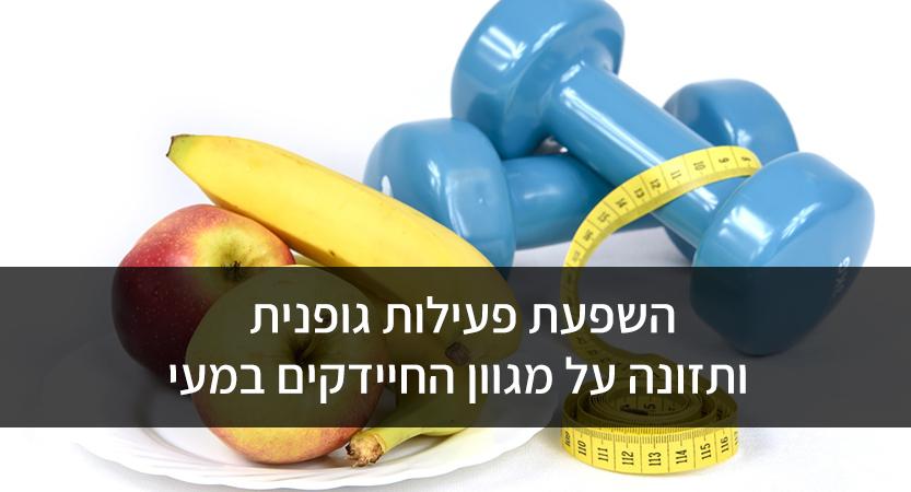השפעת פעילות גופנית ותזונה על מגוון החיידקים במעי