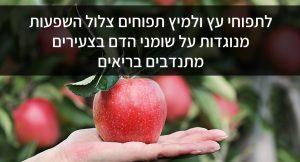 לתפוחי עץ ולמיץ תפוחים צלול השפעות מנוגדות על שומני הדם בצעירים מתנדבים בריאים