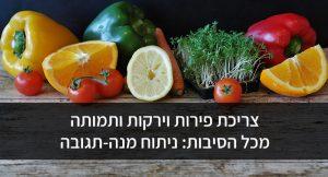 צריכת פירות וירקות ותמותה מכל הסיבות: ניתוח מנה-תגובה
