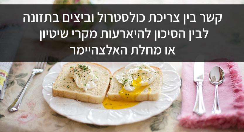 קשר בין צריכת כולסטרול וביצים בתזונה לבין הסיכון להיארעות מקרי שיטיון או מחלת האלצהיימר