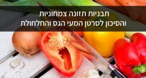 תבניות תזונה צמחוניות והסיכון לסרטן המעי הגס והחלחולת
