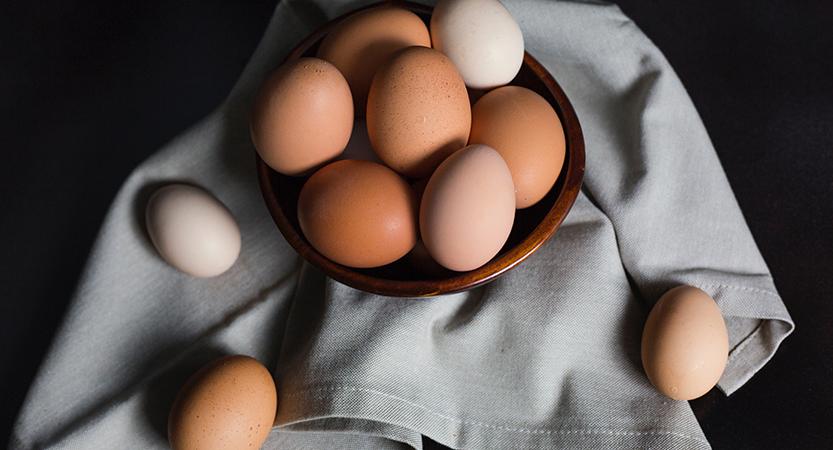 השבת כבודה של הביצה בתזונתנו