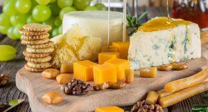 השפעת התזונה על בריאות העצם במעגל החיים