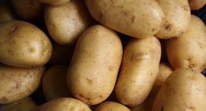 תפוחי-אדמה ובריאות – חלק א'