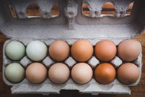 קשר בין צריכת ביצים לבין שומני הדם, מחלות קרדיו-ווסקולריות ותמותה בקרב 177,000 אנשים ב-50 מדינות